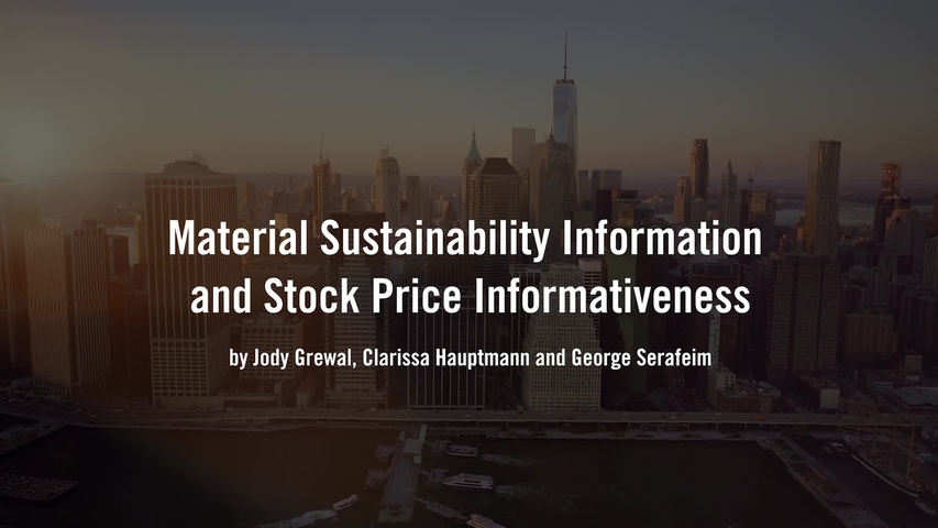 Material Sustainability Information and Stock Price Informativeness