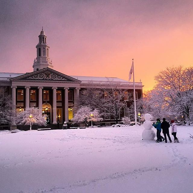 The Second Year Experience - MBA - Harvard Business School